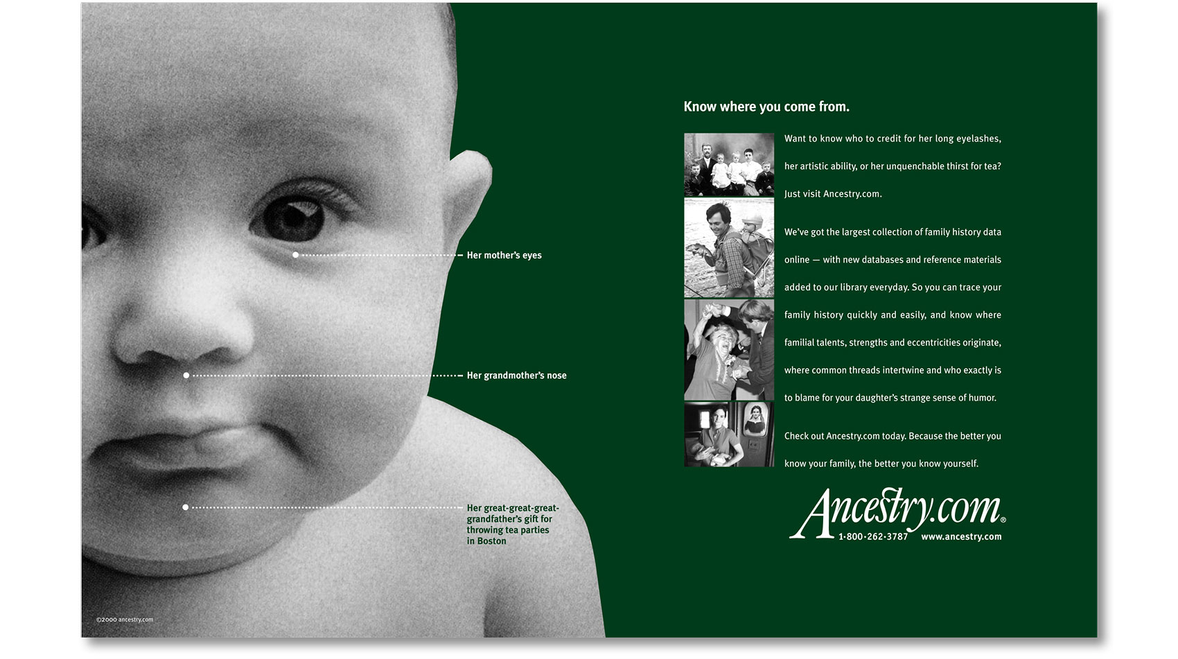 ancestry-baby_03